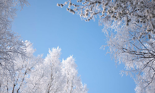 solig vinterhimmel
