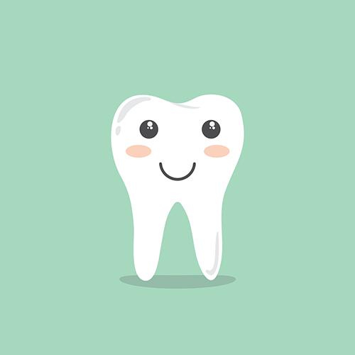 Tand med två rötter